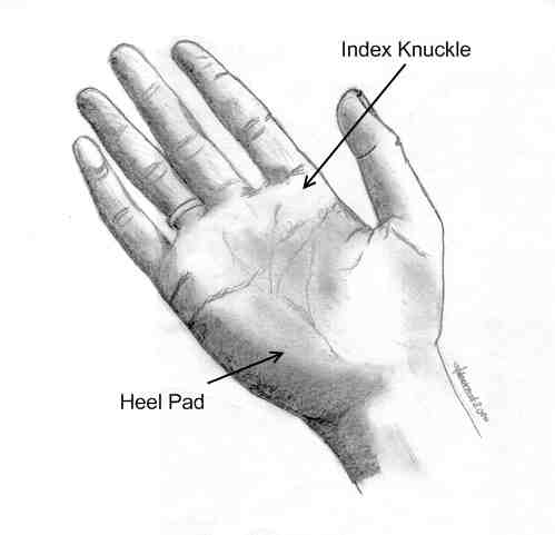 Index Knuckle and Heel Pad